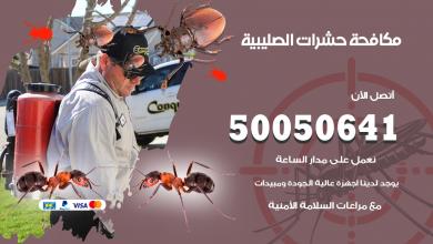 مكافحة حشرات الصليبية