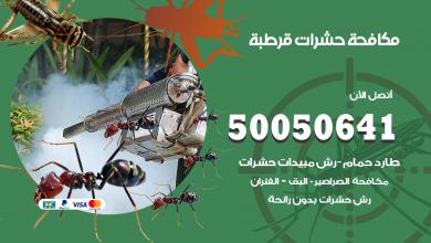 مكافحة حشرات قرطبة